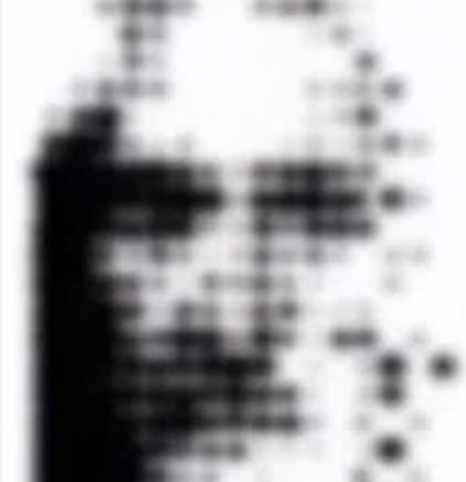 Shroud Image Made With Crop Circles